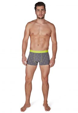 SKINY_191_M_CasualSelection_boxers_086701_081857_060.jpg